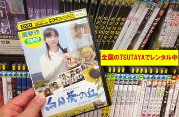 向日葵DVD_edited-3.jpg